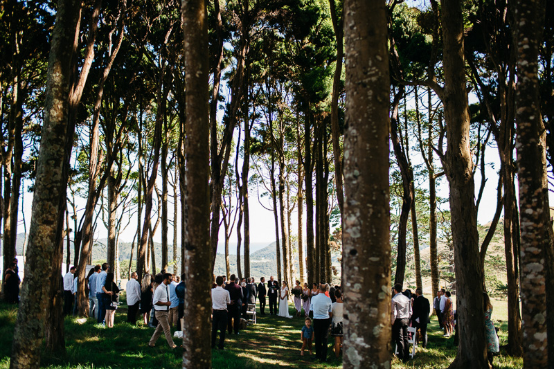 Jonkers Farm Wedding Auckland-050